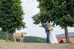 Poroka-portret-ženin-in-nevesta-kmetija-na-Lanišah-1-nives-brelih-photography-julij-2018